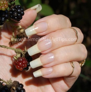 Simple Nail Art Tips Longest Nails 298x300 About Ana